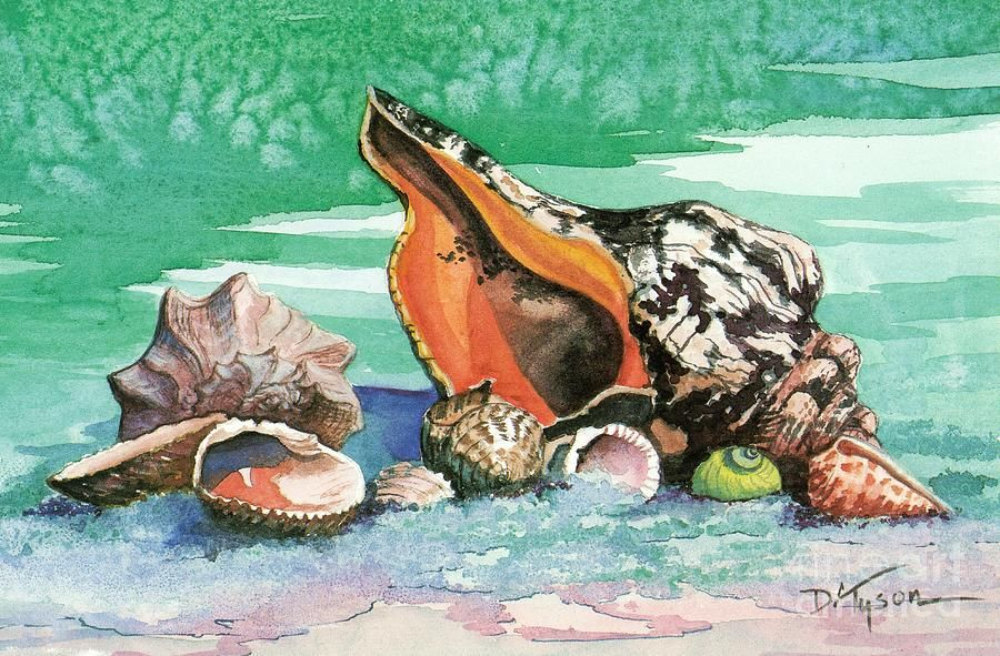 sea shells canvas print    canvas art by diana tyson in