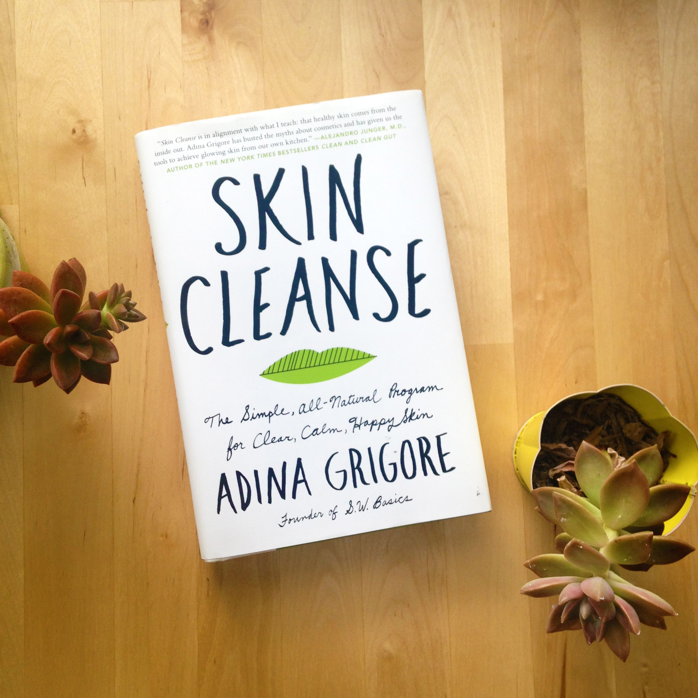 FOR YOUR BOOKSHELF // SKIN CLEANSE BY ADINA GRIGORE