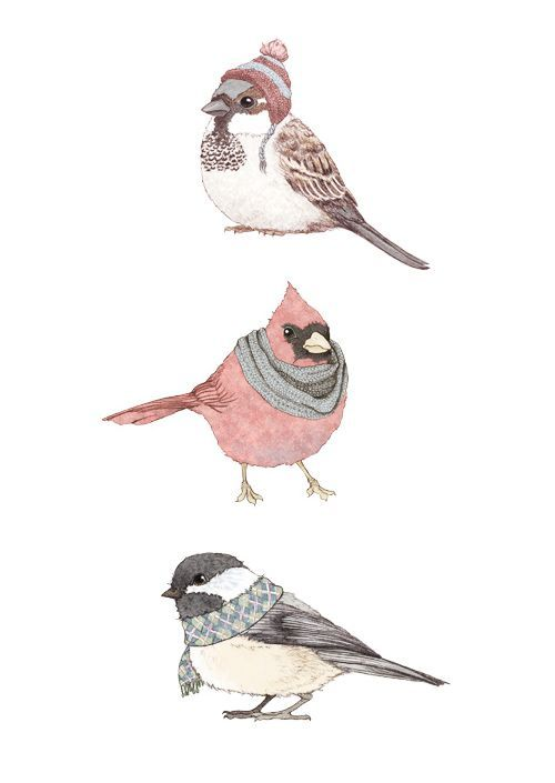 winter birds art pinterest bird illustrations and drawings