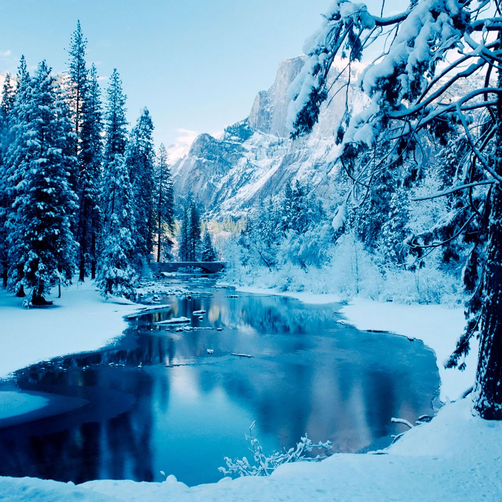 Best Ipad Wallpapers Bing Images With Images Winter