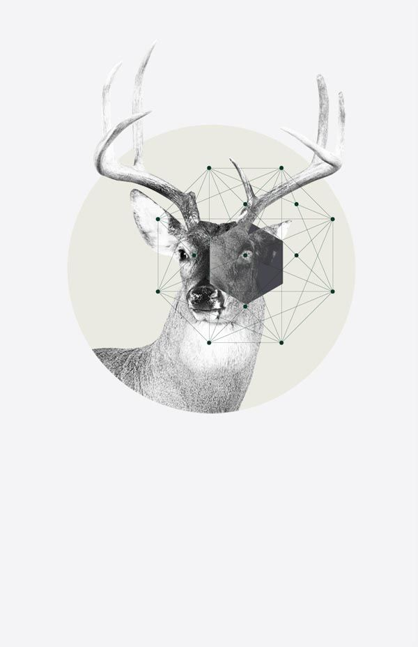 Graphics and Artworks by Jaime Romero