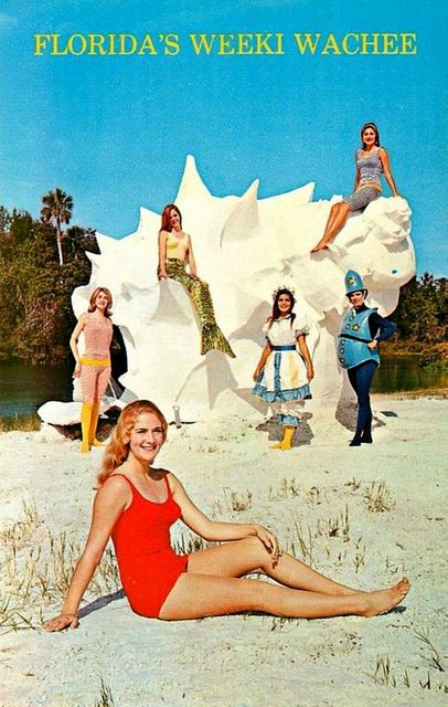 """The Weeki Wachee Mermaids don the costumes for their all new 1966 Underwater Mermaid show, """"Mermaid Follies,"""" as they pose with the giant Queen Conch Shell at Florida's Weeki Wachee....located at the Florida west coast junction of U.S. 19 and Florida 50."""
