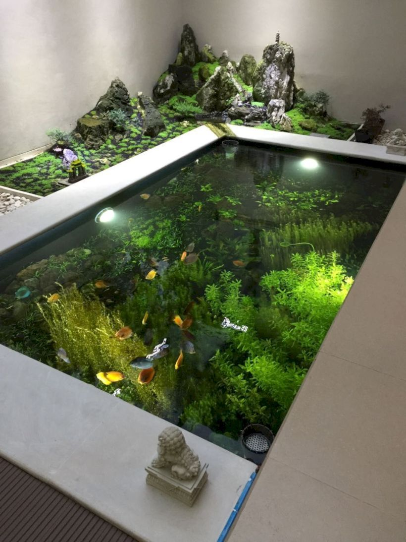32 Stunning Low Water Landscaping Ideas For Your Garden: 51 Stunning Indoor Fish Ponds With Waterfall Ideas