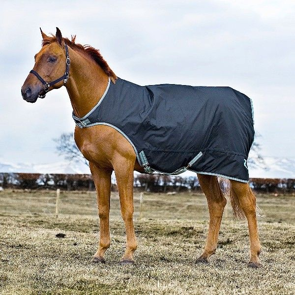 Horze Horse Walker Rug