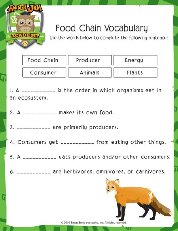 Food Chain Vocabulary Animal Jam Academy Food Chain Food Chain Activities Animal Jam