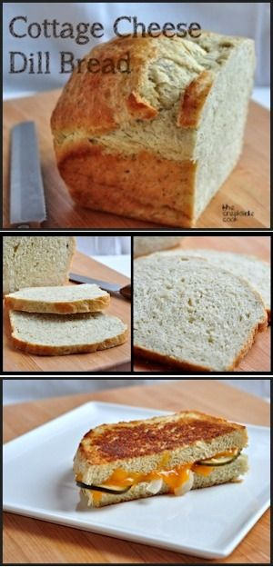 cottage cheese dill bread recipe comfort food recipes rh pinterest com Cottage Cheese Herb Bread Cottage Cheese Bread Bread Machine