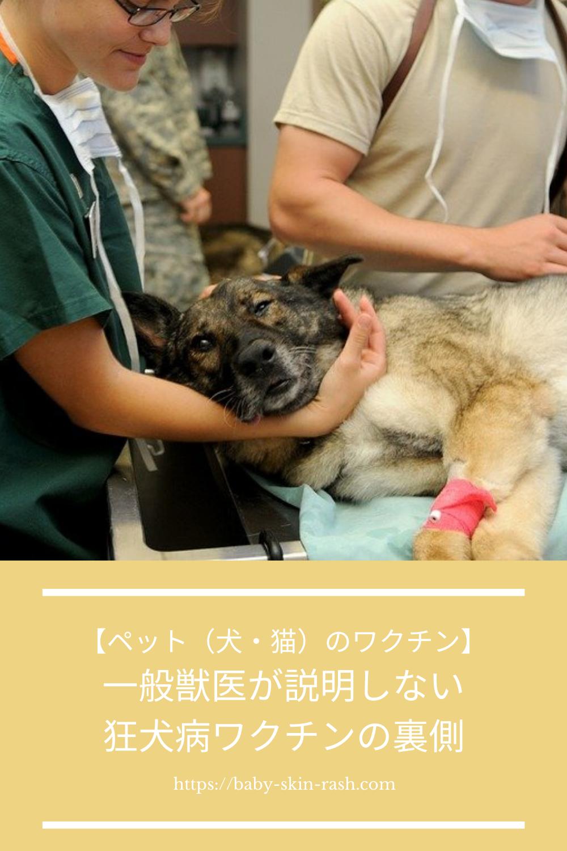 ペット 犬 猫 のワクチン 一般獣医が説明しない狂犬病ワクチンの裏側 ペット 犬 ペット 犬