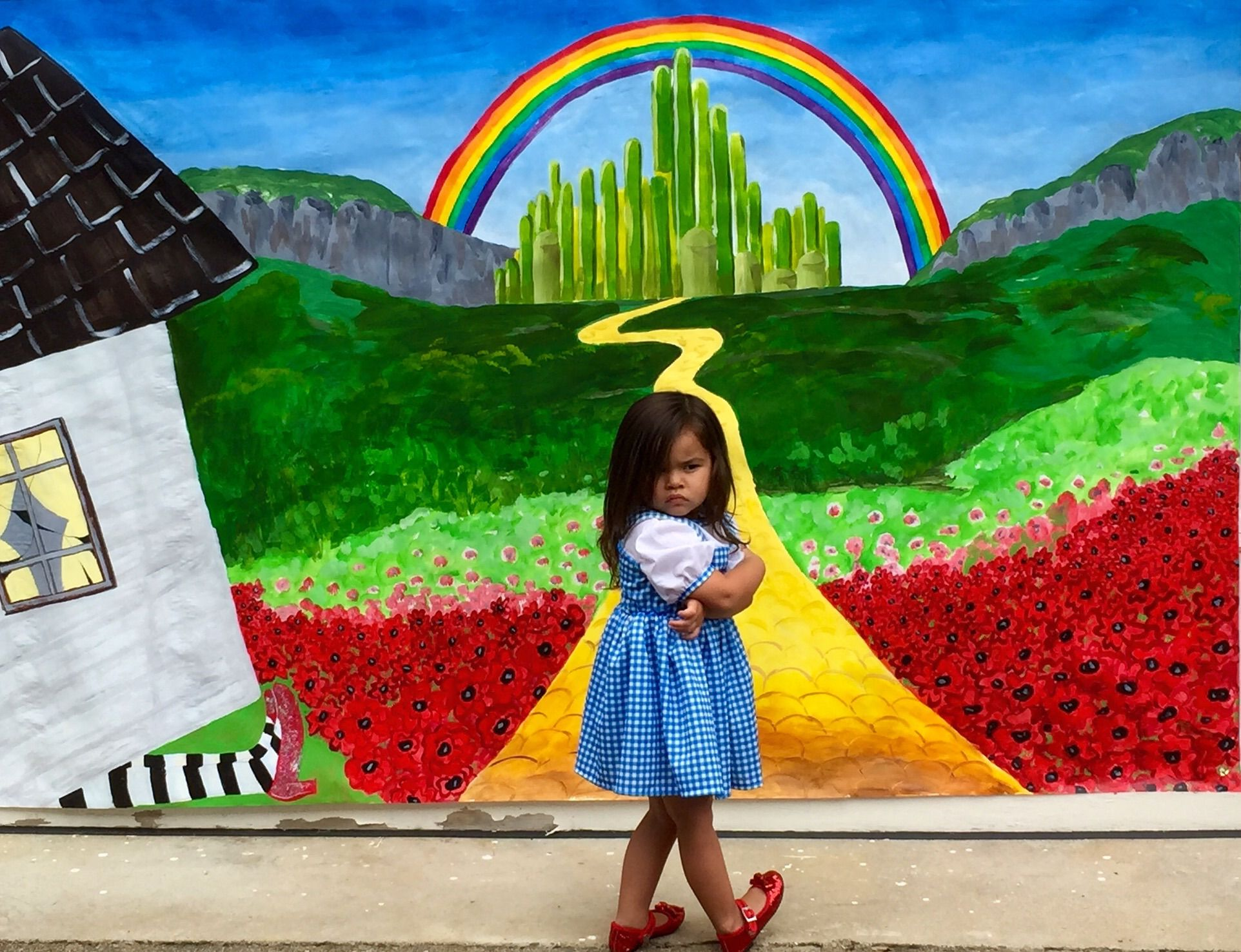 Painted A Backdrop On Tyvek For My Daughters Wizard Of Oz Birthday
