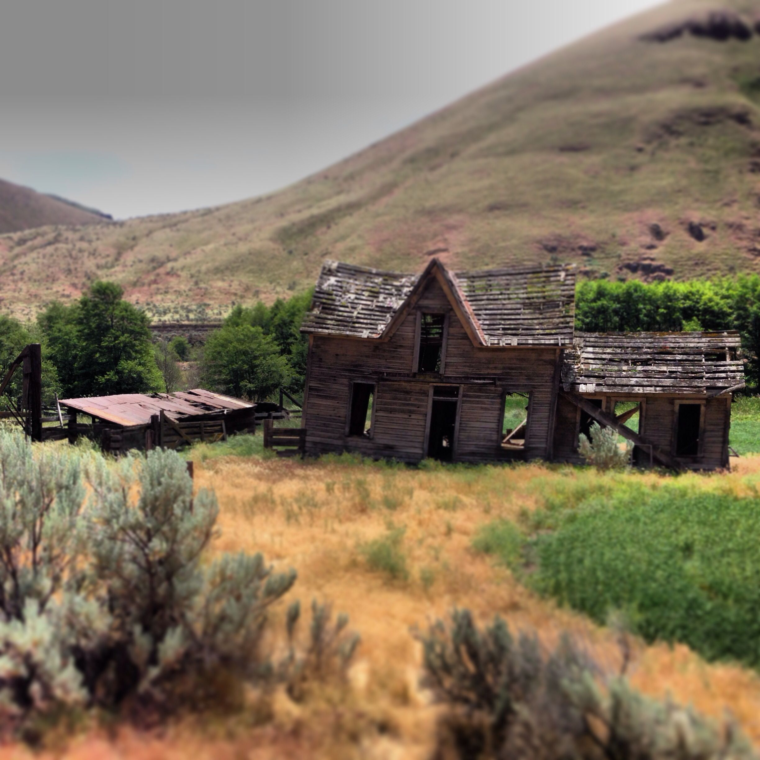 Harris Homestead. Deschutes River Trail. Backpacking
