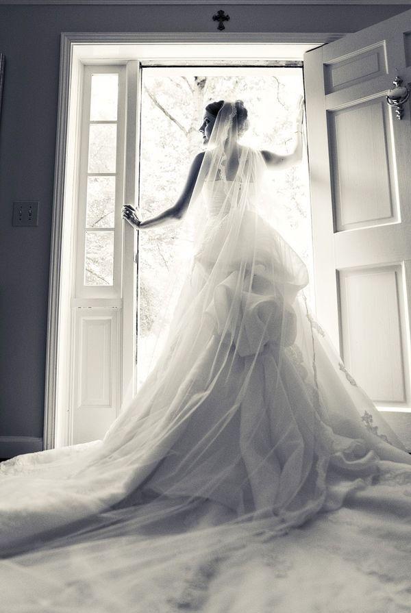 Tumblr bride video