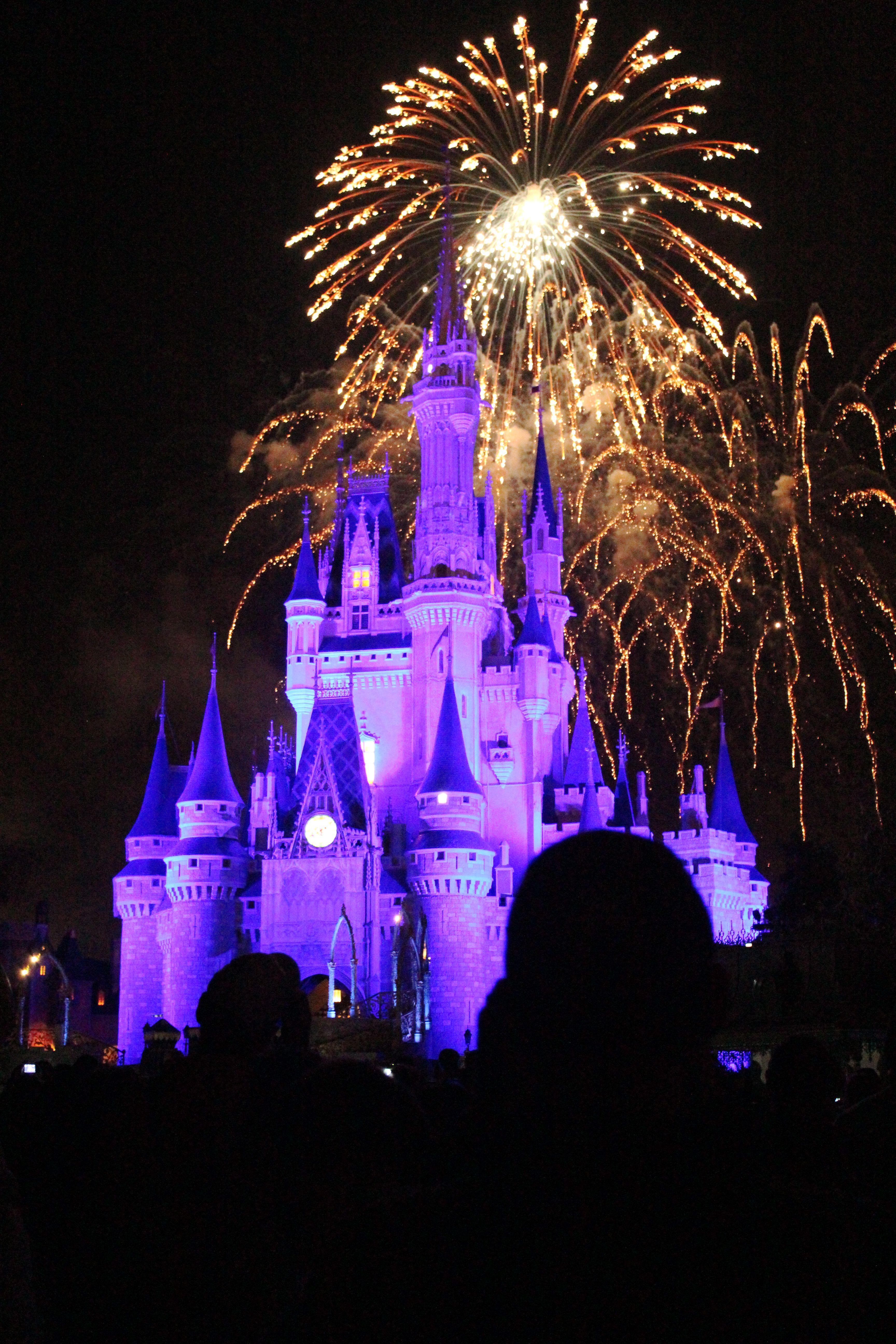 disney magic Vacation spots, Disney magic, Favorite places