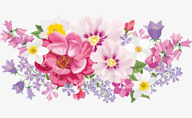 Elegant Watercolor Flowers Watercolor Clipart Elegant Flowers
