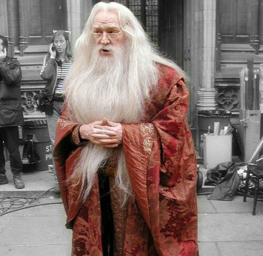 Pin By Dan Blasius On Harry Potter Richard Harris Harry Potter Characters Richard Harris Dumbledore