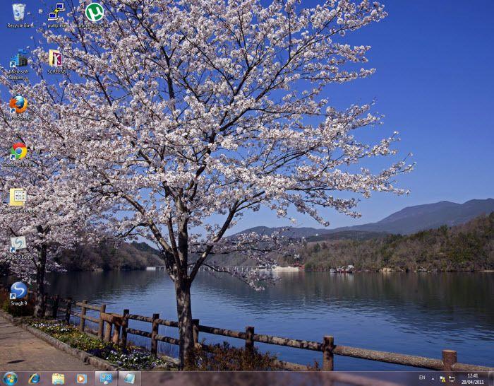 cherry blossoms artsy fartsy