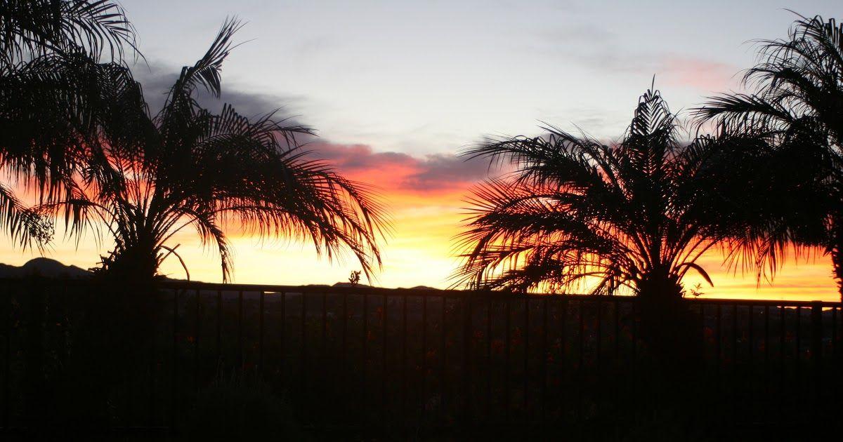 Wow 30 Gambar Pemandangan Matahari Terbit Dan Terbenam Gambar Pemandangan Pohon Alam Matahari Terbit Matahari Download Di 2020 Pemandangan Matahari Terbit Gambar