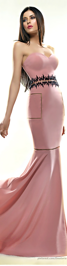 Saiid Kobeisy ● SS 2014 - pink and black gown