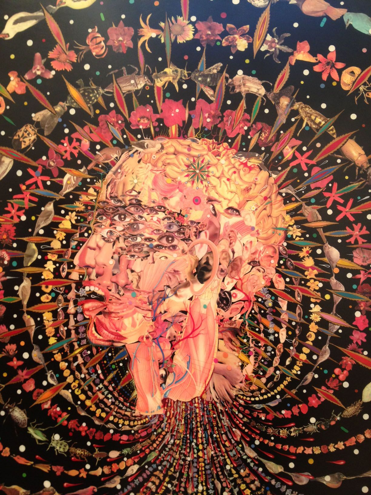 Fred Tomaselli at James Cohan Gallery, Dec '12.