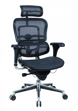 The Raynor Ergohuman Series Was Designed Primarily For People Who Sit In  Their Chairs For Long Periods Of Time Working Long Hours.
