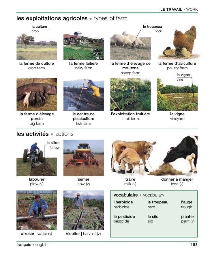Les Exploitations Agricoles Phrases En Francais Vocabulaire Francais Apprendre L Anglais