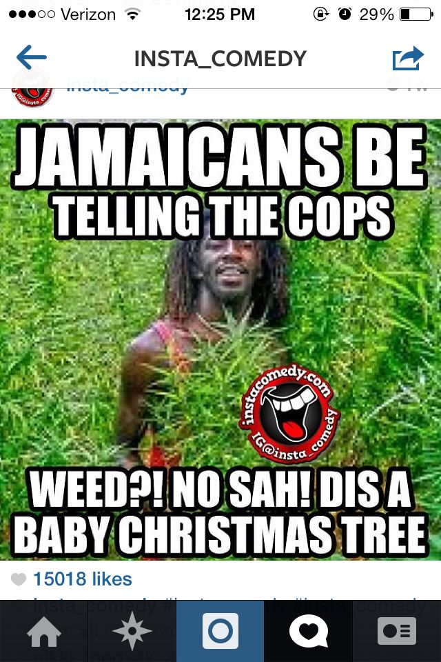 248d94684e37fb7b4fe428272def3f96 jamaicans be like jamaica pinterest humor, laughter