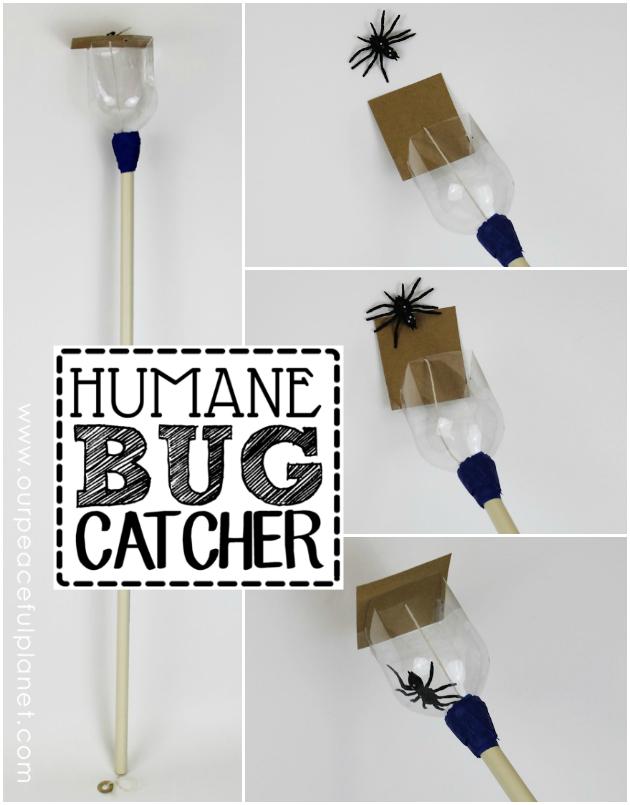 Maak deze eenvoudige maar Humane Bug Catcher uit een fles soda.  Het staat u toe om hen vriendelijk te vangen op armlengte, neem ze dan naar buiten en zet hen vrij.