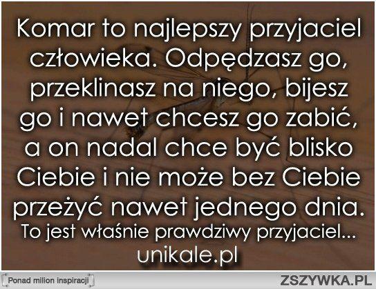 Pin By Wioletta Rawska On Na Wesolo Zabawne Memy Sentencje Smieszne