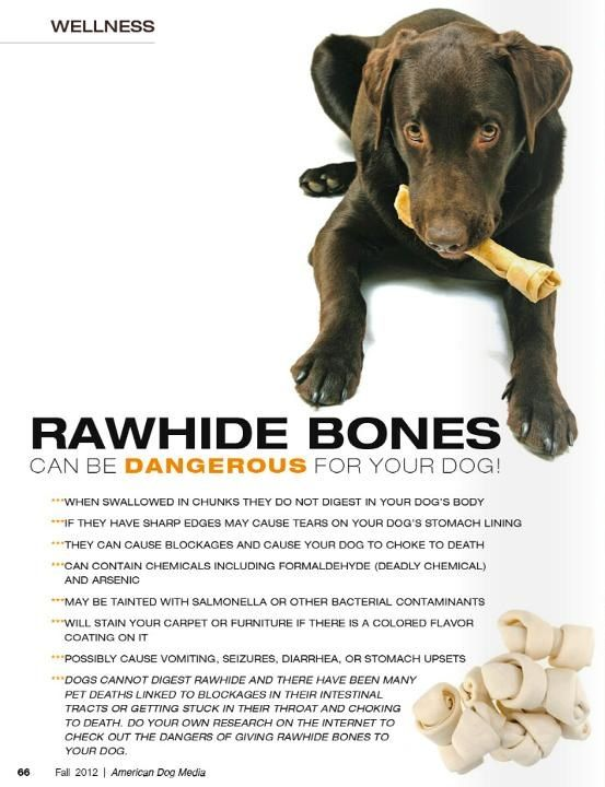 Rawhide Bones Are Bad For Dogs Lots Of Reasons Why Rawhide