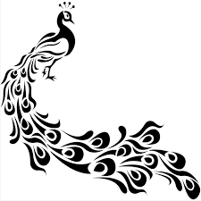 Image result for peacock drawing outline for glass