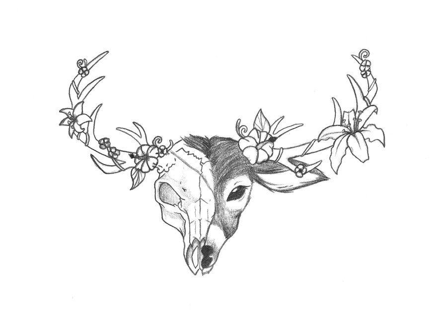 Deer Skull Drawing Deer Head Tattoo Deer Skull Drawing Deer Tattoo