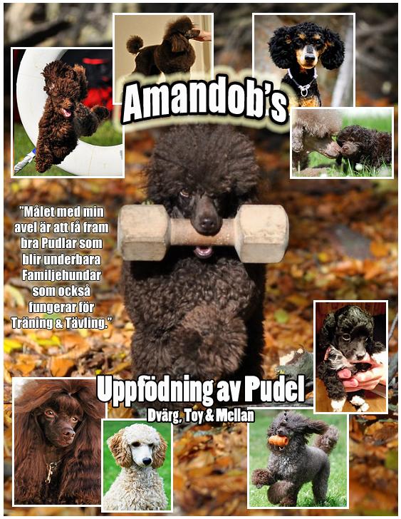 Amandob's - Nacka