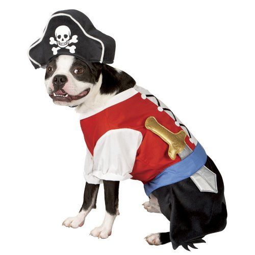 Arrrr! Pirate Dog!