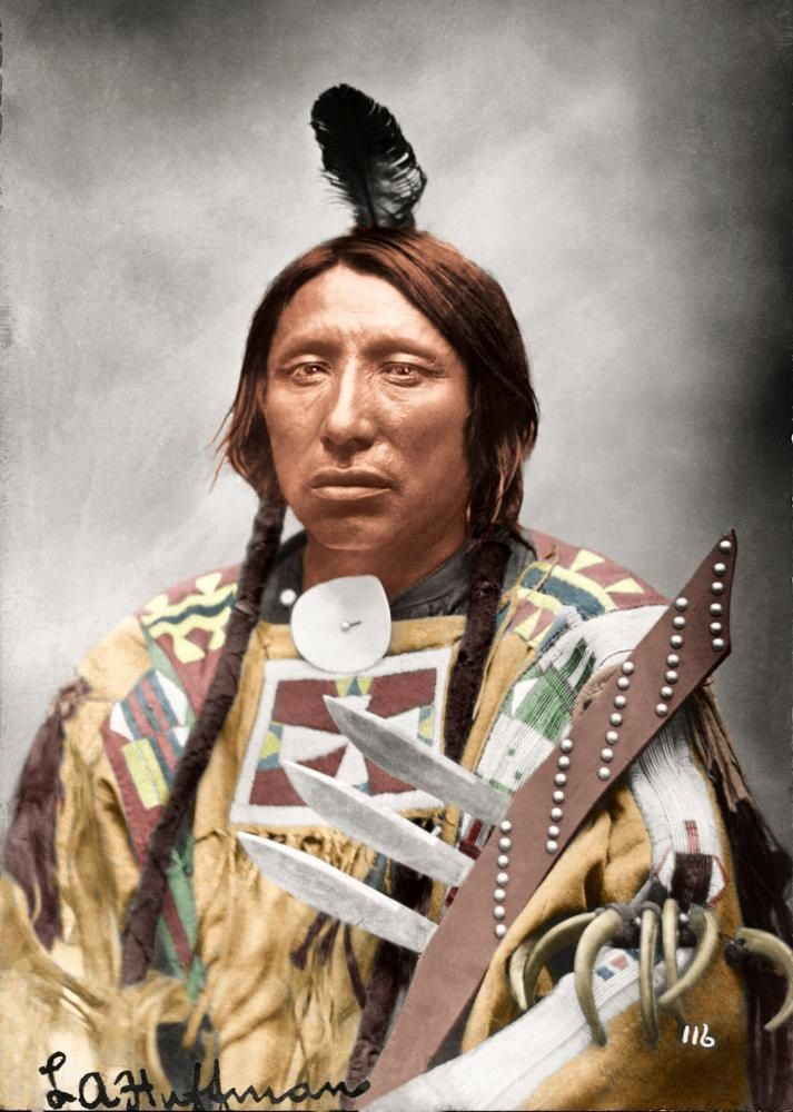 Sioux Chief Spotted Eagle, Photo By La Huffman -7213