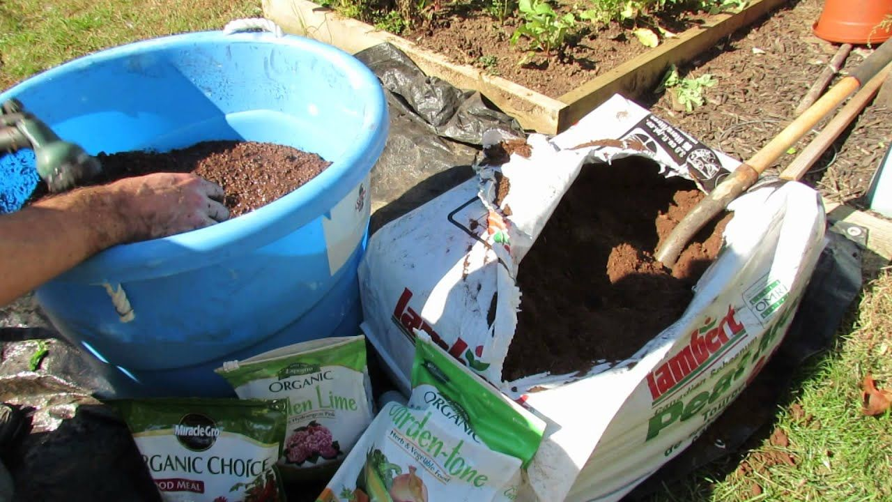 How to Organically Prepare Peat Moss for Container/ Raised