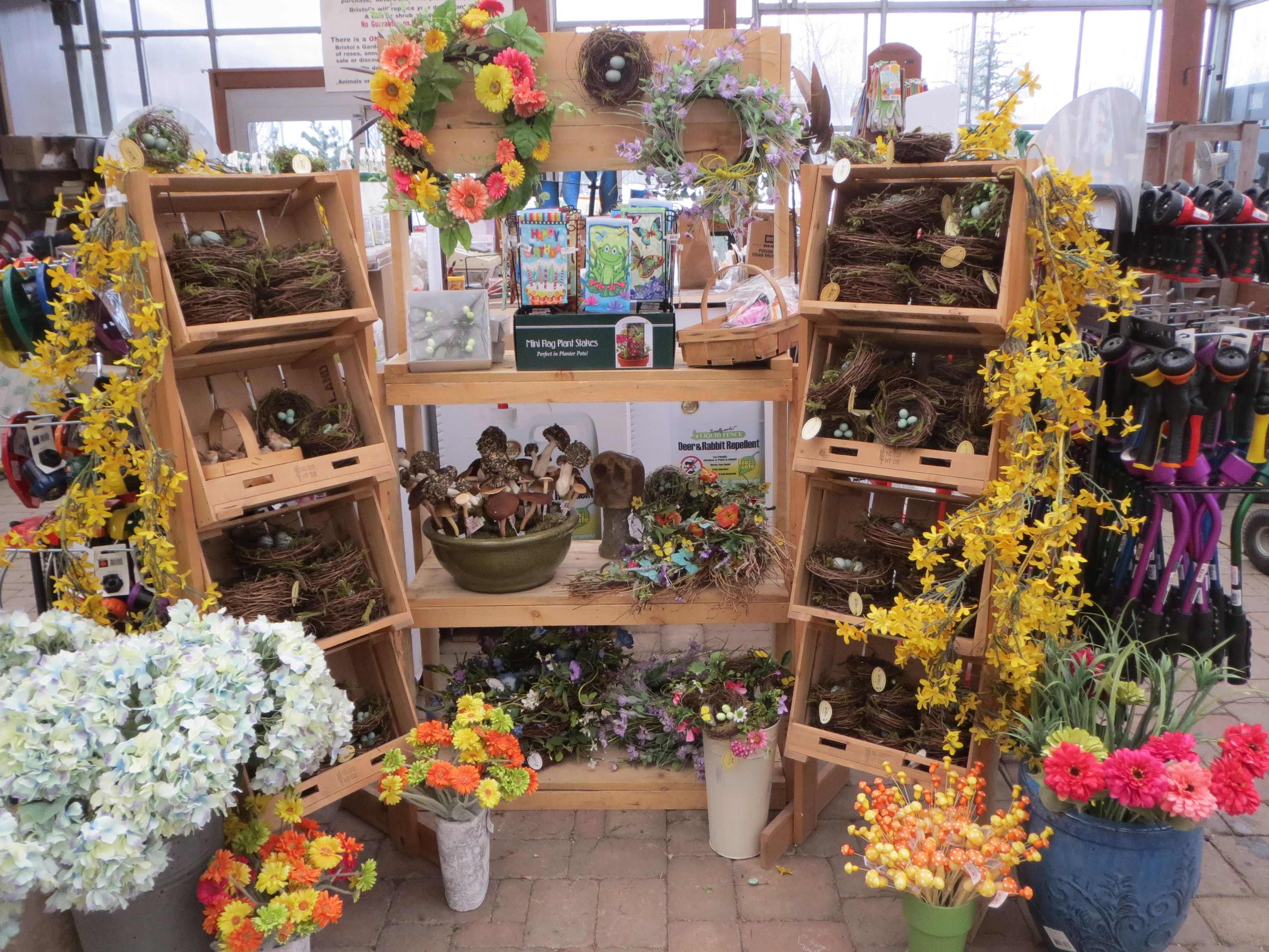 Spring has sprung at Bristol's Garden Center (Victor, NY