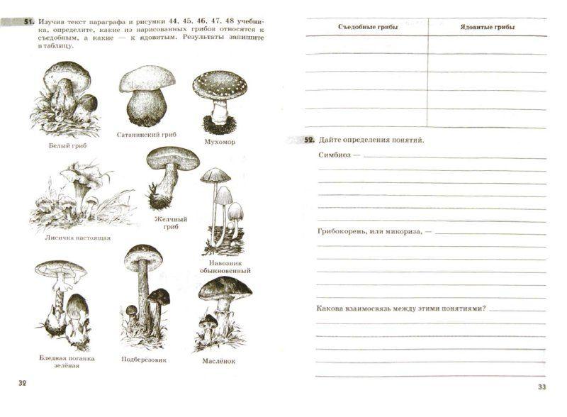 Учебник по английском оксана карпюк 11 класс онлайн