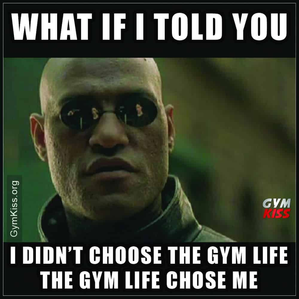 Pin By Whey To Go On Fitness Workout Memes Gym Memes Workout Humor