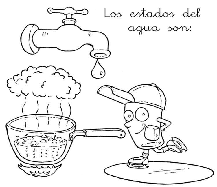 Los Estados Del Agua Agua Fichas Ciclo Del Agua