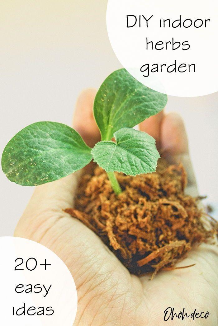Photo of 21 DIY indoor herbs garden ideas – The best DIY ideas to easily grow an indoor h…