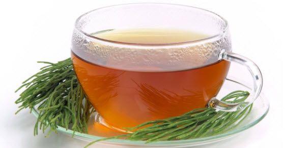 Kako se priprema čaj od preslice i kakvo je njegovo delovanje kod bolesti pluća i bubrega. Da li je poljska preslica dobra za kosu i nokte