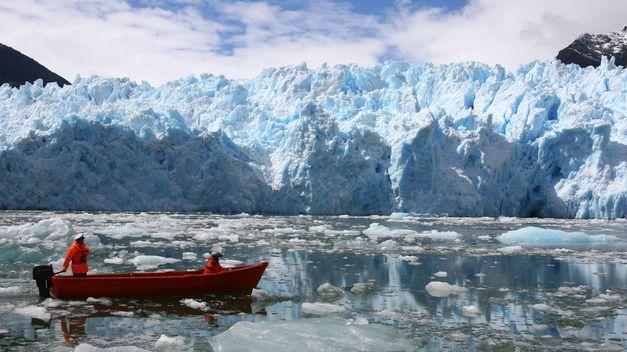 Fotos de Patagonia Chilena - Buscar con Google | Arboles y ...