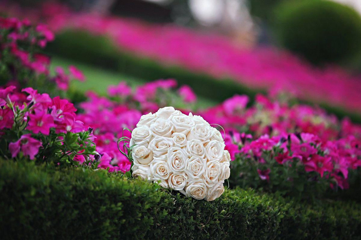 Photo by Hüseyin Kara of May 05 for Wedding Photographer's Contest