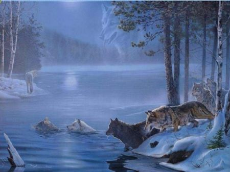 Night Crossing Dogs Wallpaper ID 1222030 Desktop Nexus