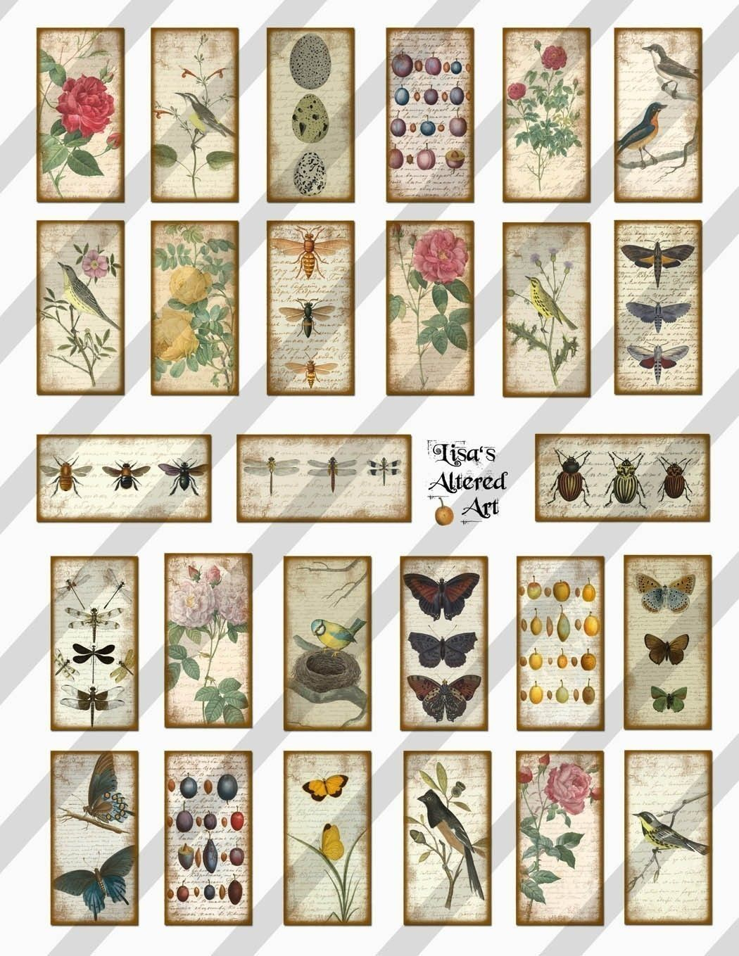 Nature Domino Digital Collage Sheet Art 1x2 Inch Images Sheet No Fs97 Instant Download
