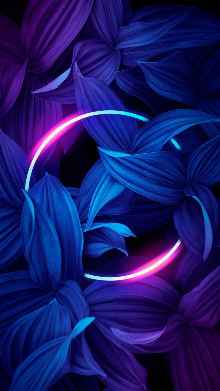 Neon Circle Nature IPhone Wallpaper - IPhone Wallpapers