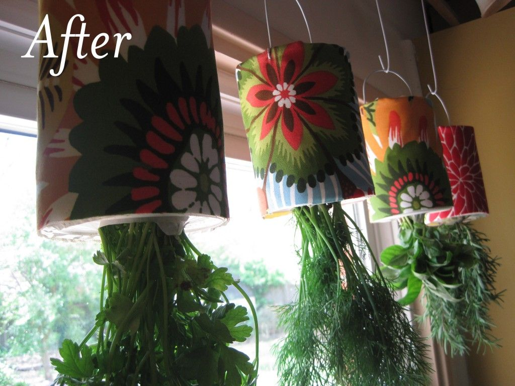 Hanging herb garden from tin cans