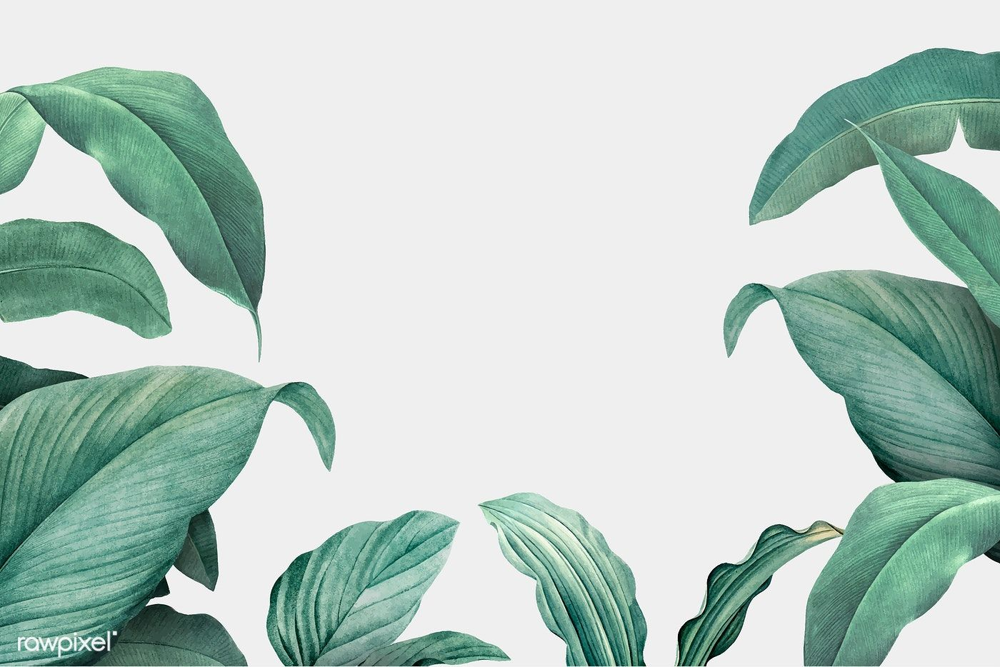 Download Premium Vector Of Hand Drawn Tropical Leaves On A White Desktop Wallpaper Art Aesthetic Desktop Wallpaper Computer Wallpaper Desktop Wallpapers Download all photos and use them even for commercial projects. download premium vector of hand drawn