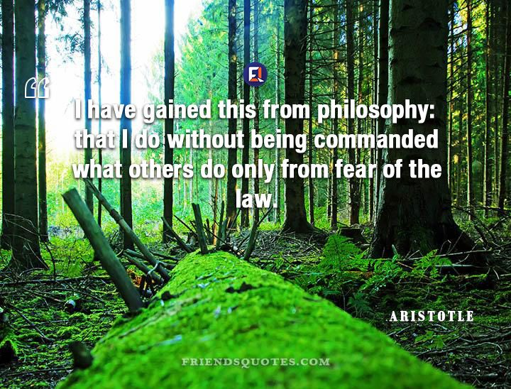 Aristotle Quote gained philosophy: without being | Mark ...