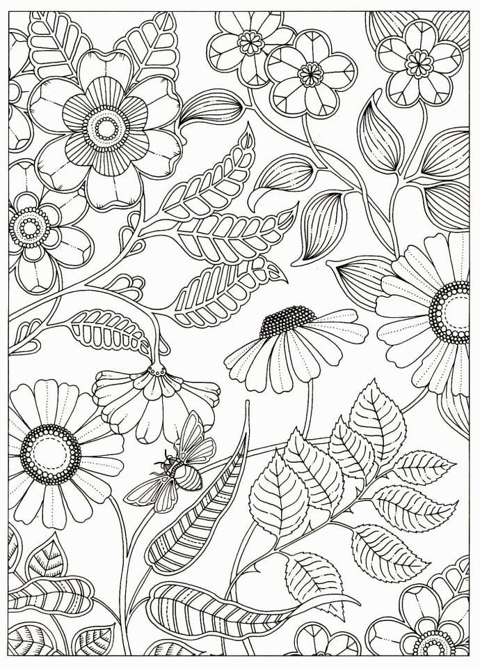 Artist Johanna Basford Secret Garden Coloring Pages Flower Colouring Adult Detailed Advanced Printable Kleuren Voor