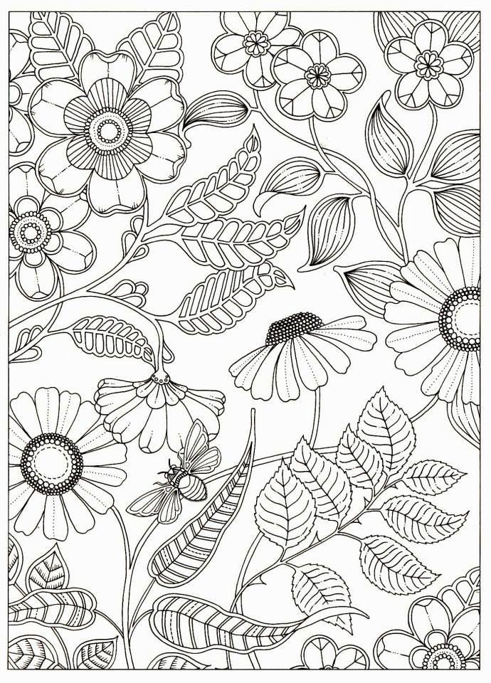 Coloriage Anti Stress Nature Et Decouverte.Artist Johanna Basford Secret Garden Coloring Pages Garden Flower