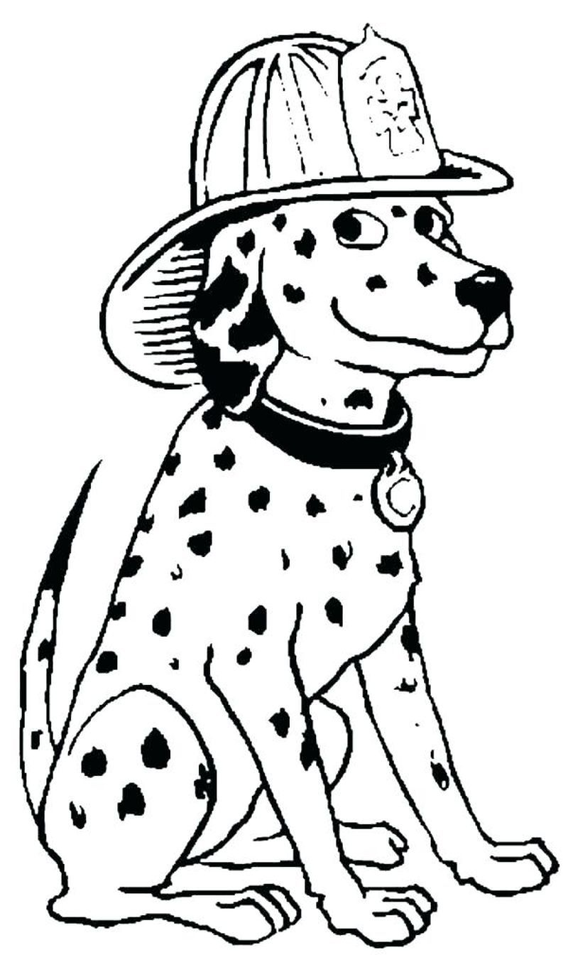Firefighter Coloring Pages Pdf Dog Coloring Page Coloring Pages Firefighter Drawing [ 1344 x 800 Pixel ]